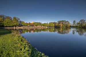 Фотография Нидерланды Речка Берег Трава Groningen