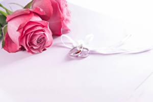 Картинки Розы Розовый Кольцо 2 Свадьба Цветы