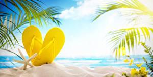 Картинка Море Сланцы Песок Пляж Природа