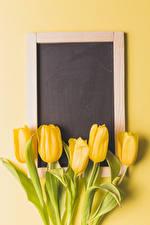 Фото Тюльпаны Цветной фон Шаблон поздравительной открытки Желтый Цветы