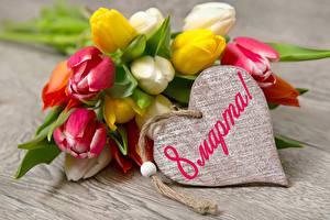 Картинки Тюльпаны Международный женский день Сердечко Цветы
