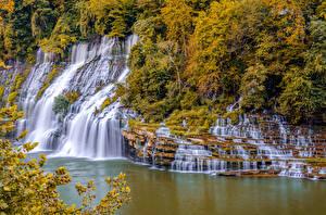 Картинки Штаты Осень Водопады Скала Кусты Warren Tennessee Природа