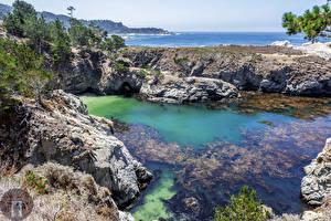 Фото Штаты Берег Калифорния Утес Природа