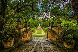 Фотографии Штаты Парки Фонтаны Флорида Майами Ветвь Кусты Лестница Природа