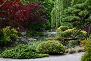 Фото Штаты Парки Пруд Кусты Деревья Gibbs Gardens