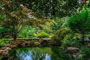 Фото Штаты Парки Пруд Камень Кусты Деревья Gibbs Gardens Природа