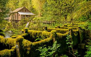Фото США Река Вашингтон Мох Водяная мельница Cedar Creek Grist Mill Природа