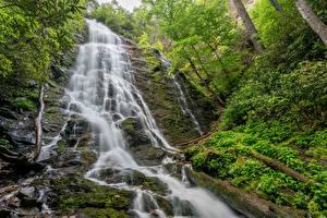 Фотография Штаты Водопады Утес Мох Mingo Falls