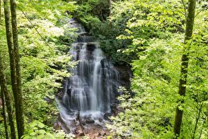 Картинки Штаты Водопады Утес Soco Falls   North Carolina Природа
