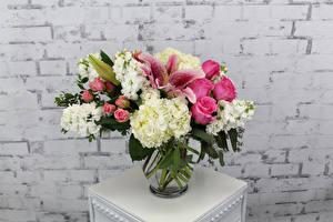 Фотографии Букет Роза Лилии Маттиола Гортензия цветок