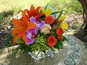 Картинки Букеты Розы Орхидея Лилии Нарциссы Гортензия Цветы