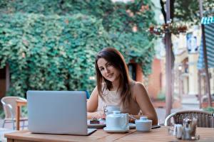 Обои Шатенка Смотрит Ноутбуки Чашка Кафе Девушки