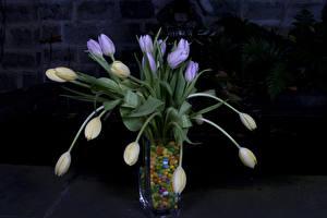 Фотографии Конфеты Тюльпаны Ваза Бутон Цветы