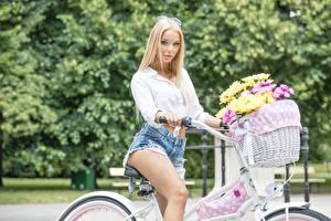 Фото Хризантемы Блондинка Корзина Смотрит Велосипед Шорты Девушки