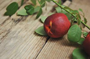 Фотография Крупным планом Персики Доски Ветвь Продукты питания