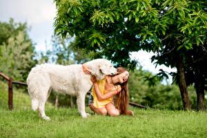 Фотография Собаки Шатенка Счастливая Ретривер Девушки