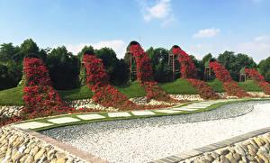 Обои Дубай Сады Петунья Дизайн Miracle Garden