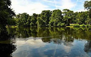 Обои Англия Речка Boultham Park Природа