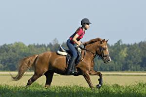 Картинки Конный спорт Лошади Бег Униформа спортивная Девушки