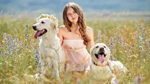 Фотографии Поля Собаки Девочки Смотрит 2 Ретривер Язык (анатомия) Ребёнок Животные