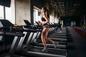 Обои Фитнес Шатенка Физические упражнения Бег Девушки Спорт