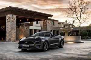 Фотографии Форд Кабриолет Серый 2018 Mustang GT 5.0 Convertible Авто