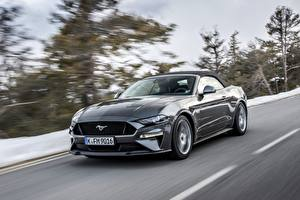Фото Форд Серый Скорость 2018 Mustang GT 5.0 Convertible Авто