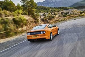 Картинки Форд Едущий Вид Оранжевый 2018 Mustang GT 5.0