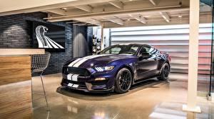 Фотография Форд Фиолетовый Полосатый Mustang 2019 GT350 Shelby Авто