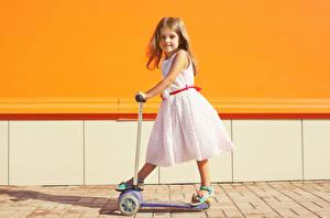 Картинки Девочка Платья Взгляд ребёнок