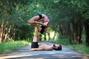 Картинка Мужчины Гимнастика 2 Шатенки Тренировка Девушки Спорт