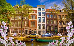 Картинки Нидерланды Амстердам Дома Причалы Цветущие деревья Ветвь Города