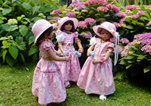 Фото Парки Гортензия Кукла Девочки Шляпа Платье Втроем Grugapark Essen Природа