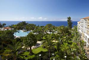 Картинки Португалия Курорты Бассейны Пальмы Madeira Природа