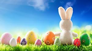 Обои Кролики Пасха Яйца Трава