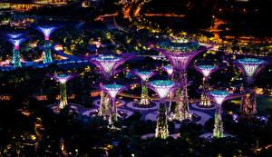 Картинка Сингапур Сады Ночные Дизайн Gardens by the Bay Города