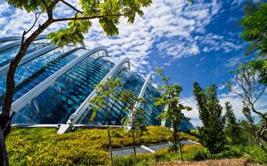 Фото Сингапур Сады Дома Дизайн Деревья Gardens by the Bay Природа