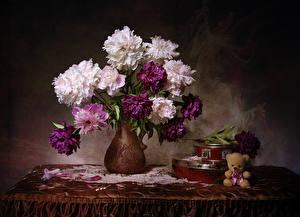 Фото Натюрморт Букеты Пионы Плюшевый мишка Ваза Стол Коробка Цветы
