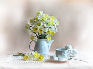 Фотография Натюрморт Нарциссы Зефир Чайник Чашка Цветы Еда