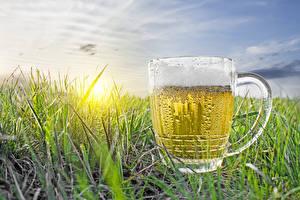 Фотографии Рассветы и закаты Пиво Кружка Пена Трава Пища