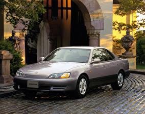 Фото Toyota Старинные Серый Металлик 1994-96 Windom Автомобили
