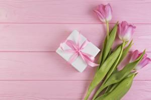 Фото Тюльпаны Розовый Подарки Цветы