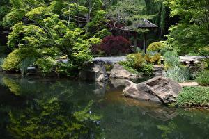 Картинки Штаты Парки Пруд Камень Кусты Дизайн Gibbs Gardens Природа