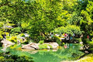 Фото Штаты Парки Пруд Камни Деревья Gibbs Gardens