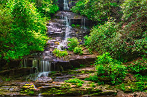 Картинки Штаты Парки Водопады Утес Кусты Great Smoky Mountains National Park