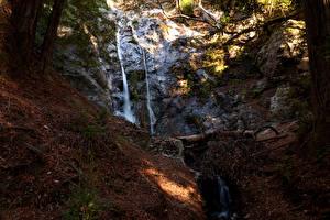 Картинка США Водопады Калифорния Утес Листва Природа