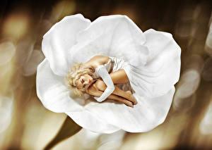 Фотография Блондинка Платье Взгляд Девушки