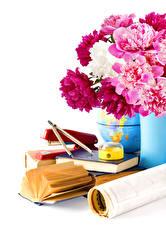 Картинки Букеты Пионы Белый фон Книга Цветы