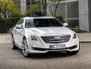 Картинка Cadillac Белый Металлик 2016 CT6 Автомобили