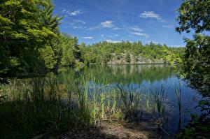 Картинки Канада Парки Озеро Pink Lake Gatienau Park Природа
